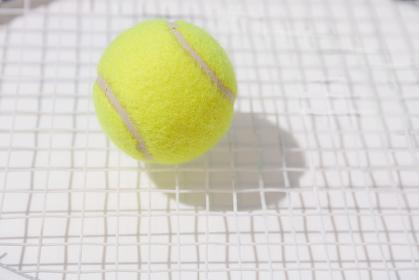 ラケットのネットの上にあるテニスボール
