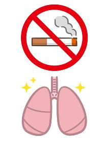 禁煙 タバコ 肺
