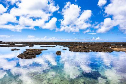 沖縄県宮古島、伊良部島の磯・日本