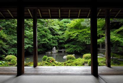 蓮華寺 書院から見た庭園 京都市