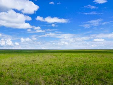 タンザニア・ンゴロンゴロ自然保護区にてサバンナ気候の草原と青空の美しいコントラスト