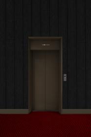 エレベーター 黒壁赤絨毯 3843