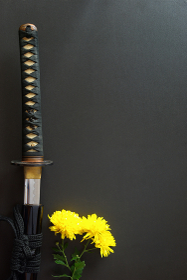 抜きかけの居合練習刀と黄色い菊の花