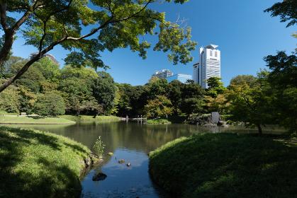 秋の青空と庭園の風景 9月