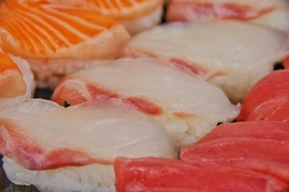 お寿司 日本食