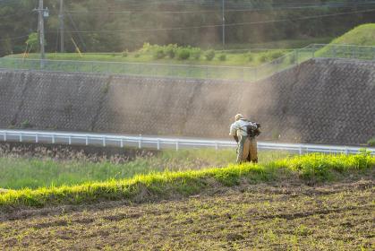 畑で草刈りをする農家のお年寄り