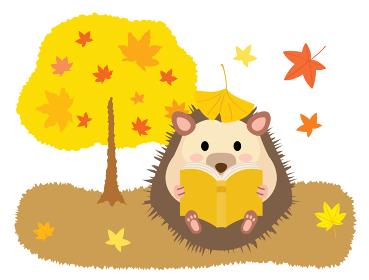 読書の秋に本を読むハリネズミ