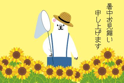 そのまま使える暑中お見舞いのテンプレート ヒマワリと虫取り網と麦わら帽子のシロクマのイラスト