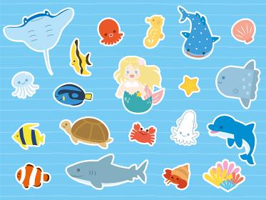 カワイイ海の生き物セット 白縁