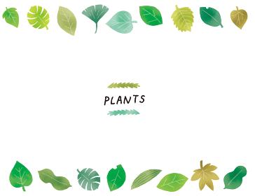 カジュアルなタッチ 色々な形の葉っぱのイラストセット