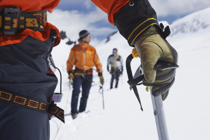 Hikers Using Walking Sticks In Snowy Mountains