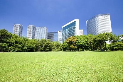 庭園と高層ビル群
