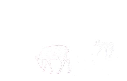 写実的な動物イラスト、虹色の鹿の親子がいる