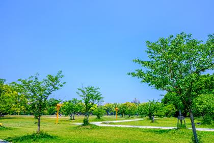 初夏の舞鶴公園