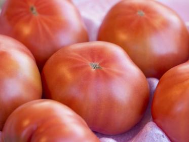 トマト,野菜,フード,食べ物,食物,食材,やさい,ヤサイ,ベジタブル,生鮮品,農産物,農作物,新鮮,フレッシュ,日本,店頭,販売,八百屋,市場,スーパー,アジア,東洋,