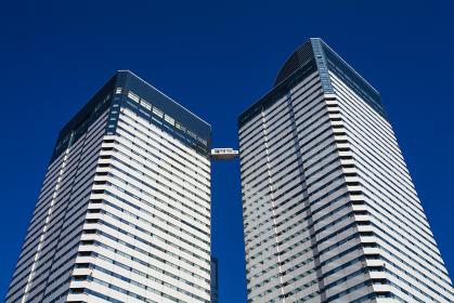 晴海の高層ビル群