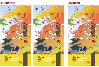 日本の秋の風景の間違い探しクイズ