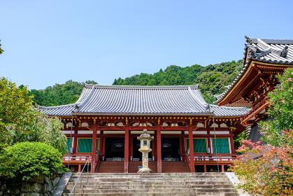 矢田寺 (奈良県大和郡山市 2020/08/06撮影)