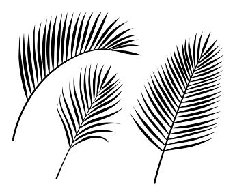 ヤシの葉 イラストアイコンセット