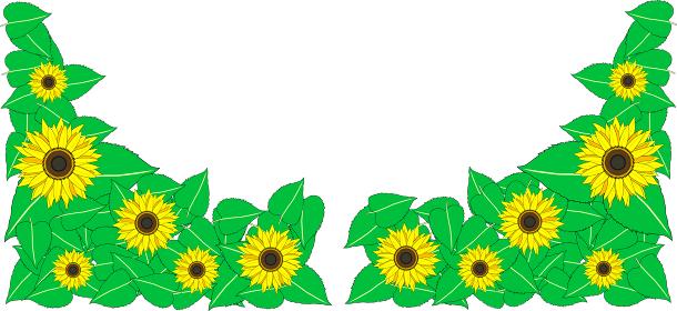 可愛い向日葵のテクスチャー素材