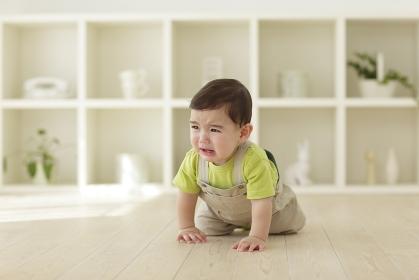 リビングで泣きながらハイハイする赤ちゃん