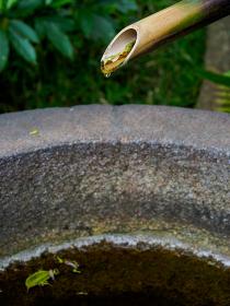 竹から流れる水