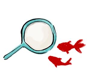 手描きイラスト素材 金魚すくい 金魚掬い きんぎょ 金魚 ぽい ポイ
