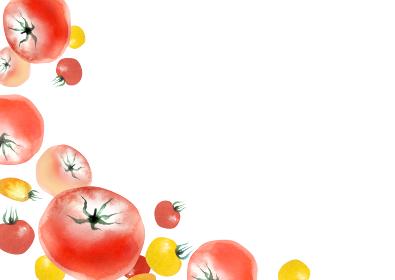 トマト 野菜 夏 背景 フレーム 水彩 イラスト