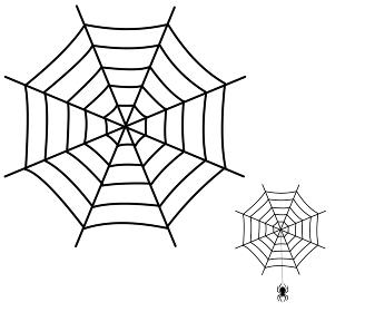 蜘蛛の巣と吊るクモ