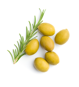 Green olives and rosemary branch.