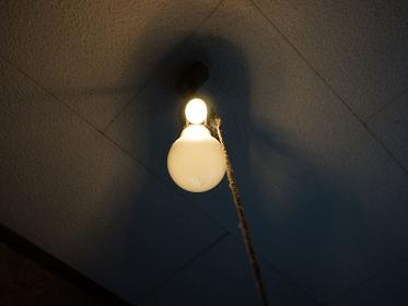 汚れた天井の裸電球