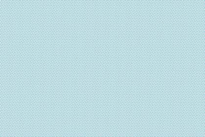 カラーパターン411