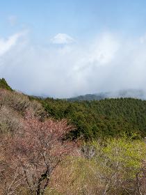 春のだるま山高原展望台からの風景 3月