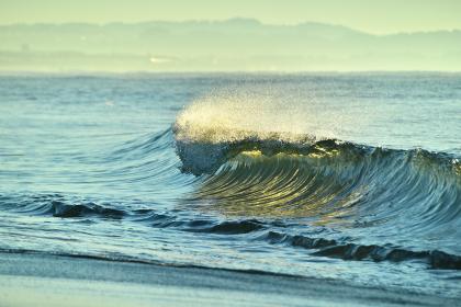太陽光を受けて透き通る波