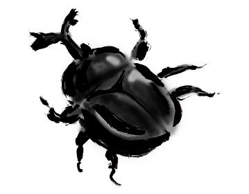 手描きイラスト素材 かぶとむし カブトムシ 甲虫 兜虫