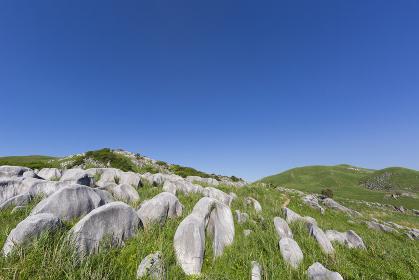 北九州国定公園平尾台 茶ヶ床付近より岩山・権現山方面を望む