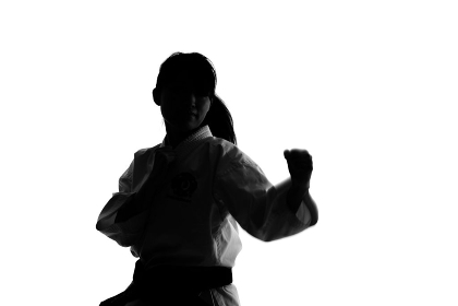 少林寺拳法をする女性のシルエット