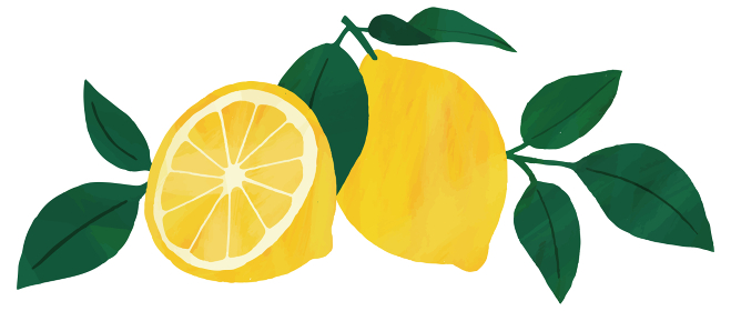 レモン 葉 挿絵 イラスト 素材