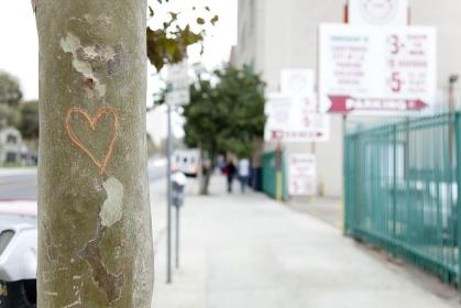 ハートの傷がつけられた街路樹