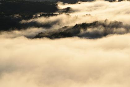 鎌倉山の雲海、茂木、栃木県