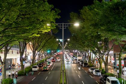 都市の夜景(日本・渋谷・表参道・長時間露光)