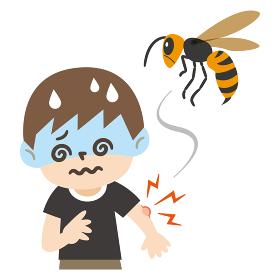 蜂に刺されて目眩を起こした男の子