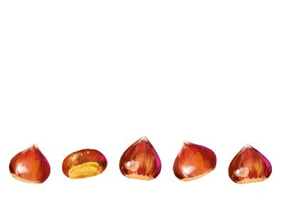 【背景透過済みベクター】秋の食べ物 栗イラスト