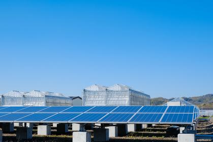 ソーラーパネル 太陽光発電 施設 メガソーラー
