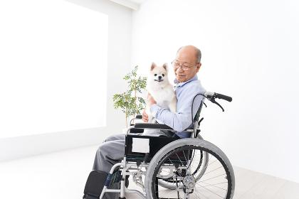 犬を飼う車椅子に乗った高齢の男性