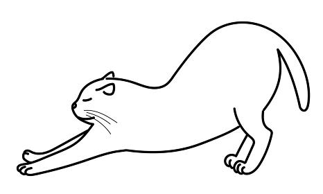 伸びをする猫・線画