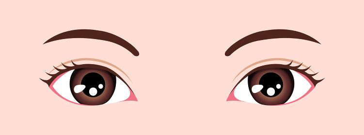若い女性の目元ズームイラスト / 東洋人・日本人