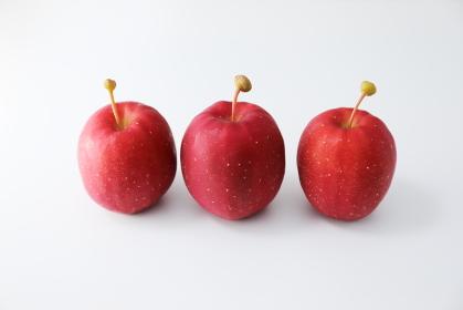 真っ赤な3個のアルプス乙女りんご