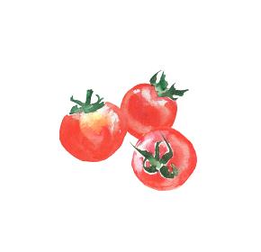 水彩で描いたミニトマトのイラスト