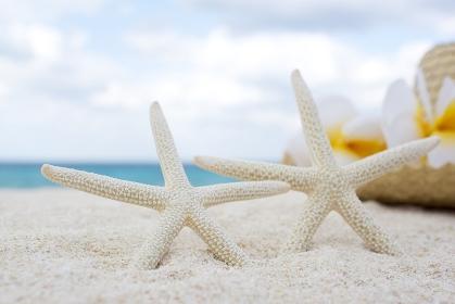 砂浜に置かれた麦わら帽子とヒトデ